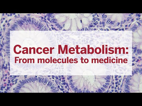 Cancer Metabolism: From molecules to medicine