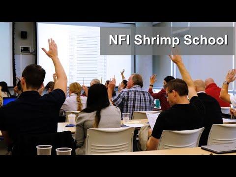 NFI Shrimp School 2019