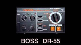 POPCORN - BOSS DR-55 KORG MS-20