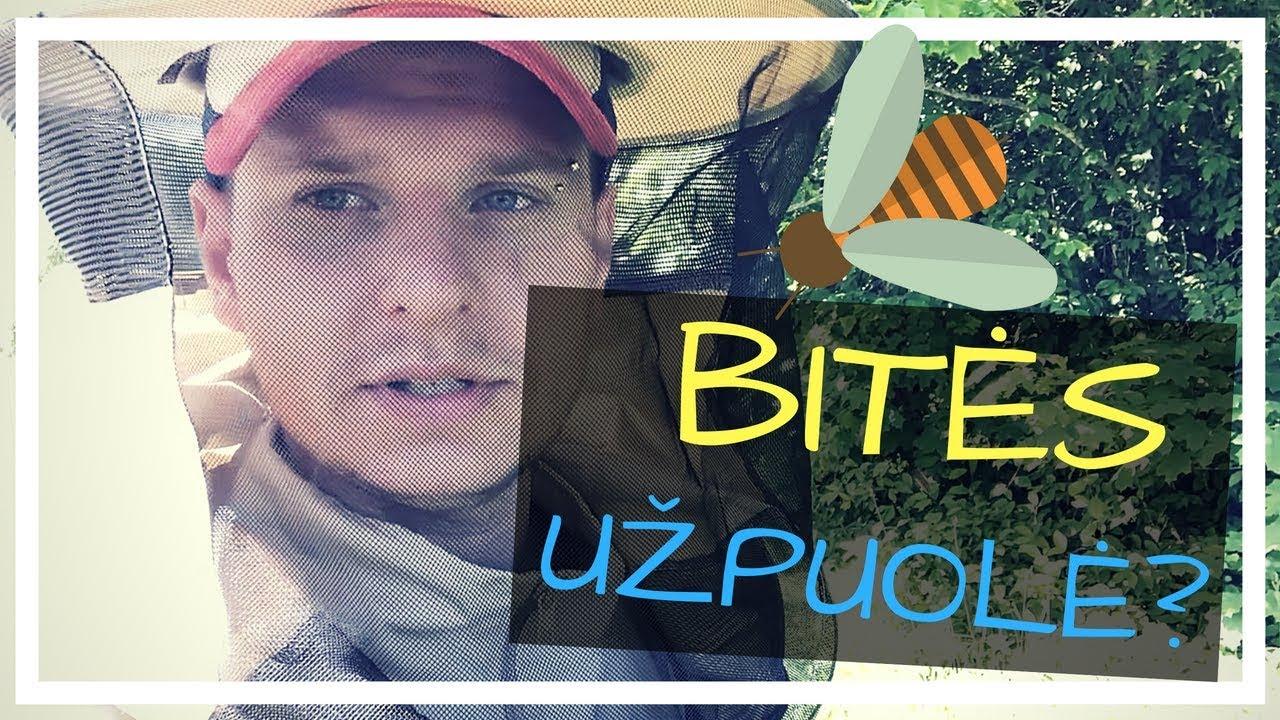 Bitininkas ir medus bičiū ūkyje - YouTube