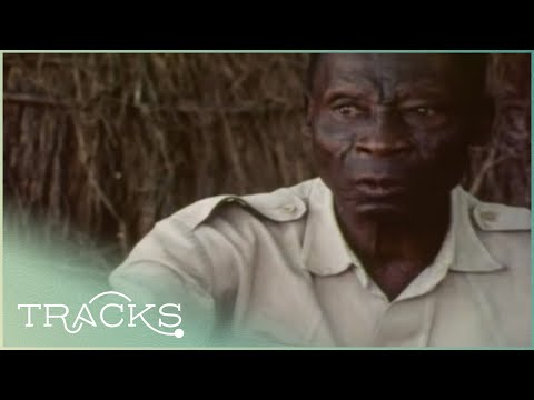 The Witchcraft Among the Azande (African Warrior Tribe Documentary) | TRACKS