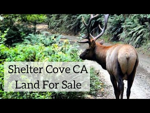 Shelter Cove CA Land for Sale
