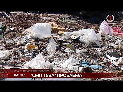 У Берегові з'явилося стихійне сміттєзвалище: як місцевій владі вдалося вирішити сміттєву проблему?