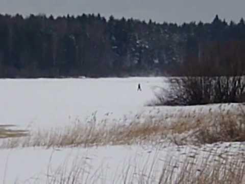 видео: Снежный человек на Рыбинском водохранилище