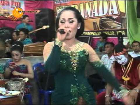 Tembang Tresno ( Arya KDR ) Java musik Campursari Supra Nada Live Secang