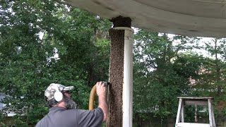 Bee Man Vs Column Full Of Bees