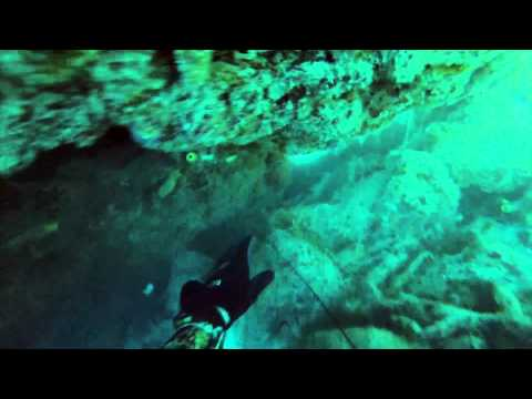 #teamchumstain-spearfishing-keys-november-2014