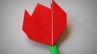 Origami - How To Make A Tulip