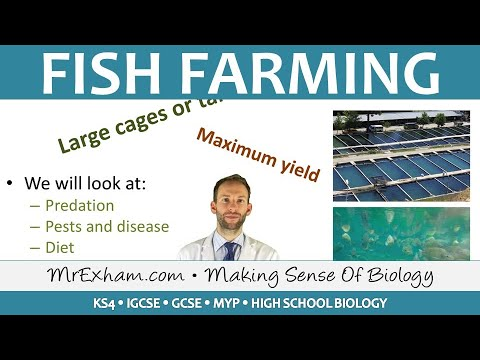 Food Production - Fish Farming - GCSE Biology (9-1)