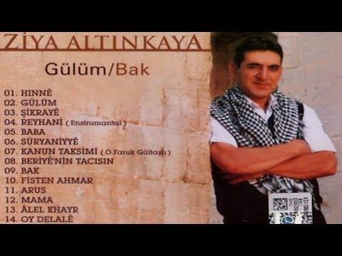 Ziya Altınkaya - Gülüm / Bak (Full Albüm)