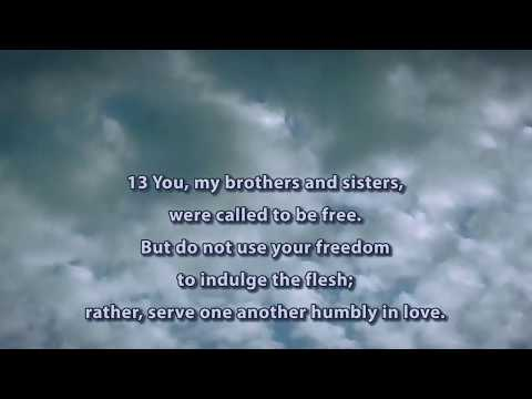 You, My Brothers and Sisters, Were Called to Be Free
