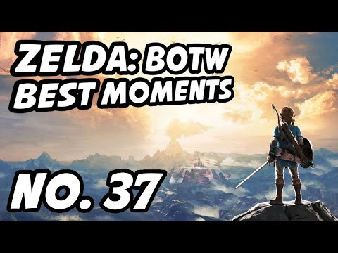 Zelda BOTW Best Moments | No. 37 | LilyPichu, Smight, TSM_TheOddOne, Id9000, Zant, Sings4Hugs