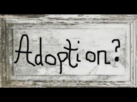 "Narcissist Adoption - The ""Pet"" Outlives The ""Owner"""