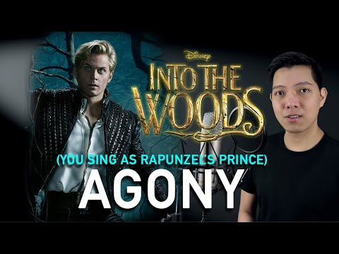 Agony (Cinderella's Prince Part Only - Karaoke) - Into The Woods