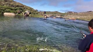 Lato Na Grenlandii | Summer In Greenland