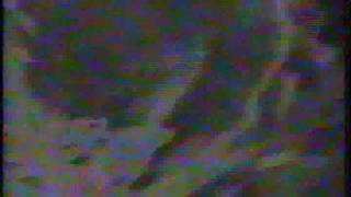Ricky Amigos - Loco Loquito - Clip