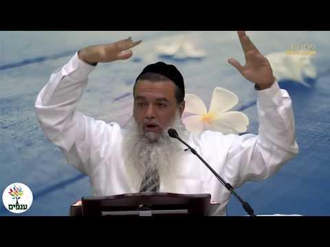 דת ומדינה - הרב יגאל כהן HD - שידור חי