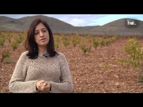 HDL Cristina Calvache, enología de altura premiada en el concurso de vinos más importante del mundo
