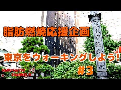 体脂肪・内臓脂肪燃焼応援企画【東京をウォーキングしよう!】