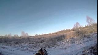 Охота на лося 120 метров из гладкого КРАСИВО  ружья   YouTube