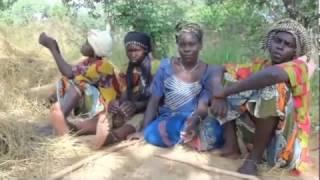 Farmers' perception on soil fertility in West Africa (ORM4Soil project)