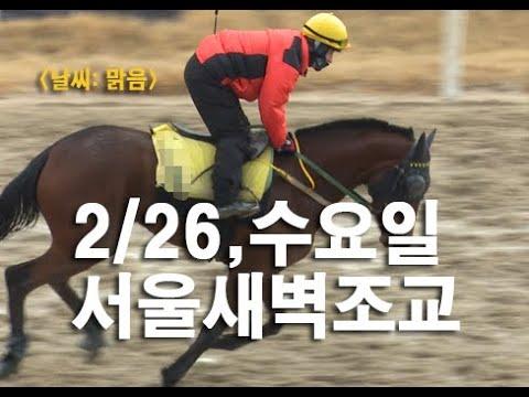 2020.2.26(수) 서울 새벽조교 동영상