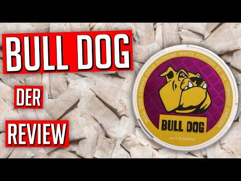 Bull Dog All