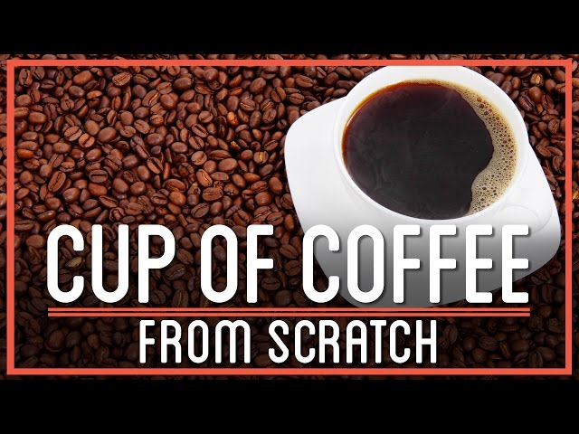 Would you Travel 5,000 Miles For a Cup of Coffee? - YouTube