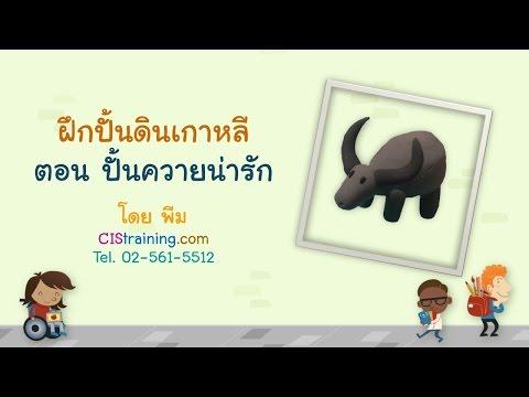 ฝึกปั้นดินเกาหลีกับ CIStraining.com 5:ปั้นควาย น่ารัก