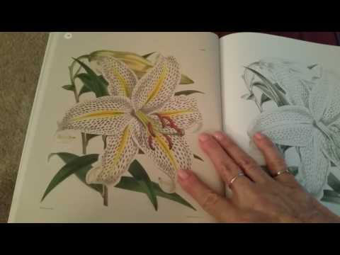 The Kew Gardens Flowering Plants Coloring Book