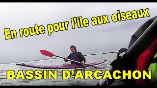 sortie en cano kayak de mer sur le bassin d arcachon
