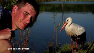 Дикий аист ест с рук! Выпрашивает рыбку у рыбаков!/Wild stork eats with hands!