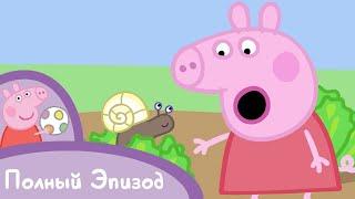 Мультфильмы Серия - Свинка Пеппа - S02 E21 Крошки букашки (Серия целиком)