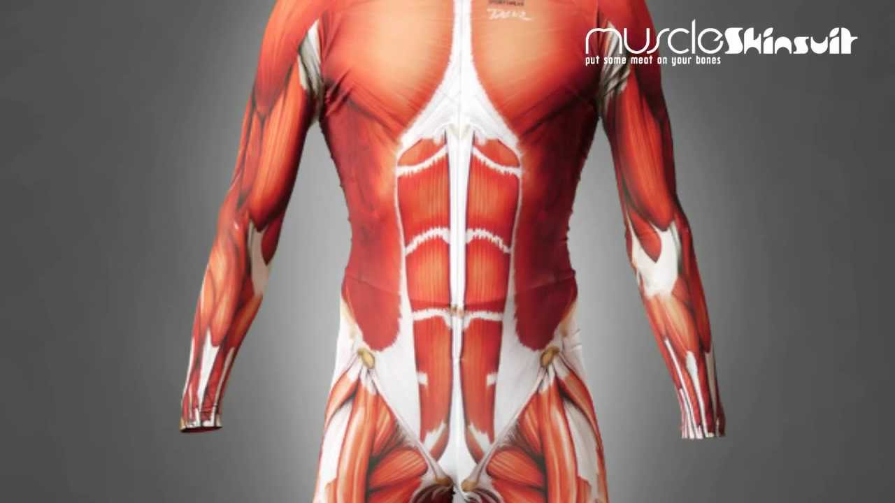 Muscle Skin Suit Youtube