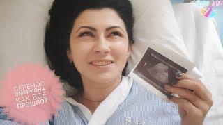 Подсадка перенос эмбриона, первое фото. День X настал!