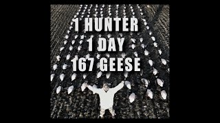 1 Hunter 1 Day 167 Geese
