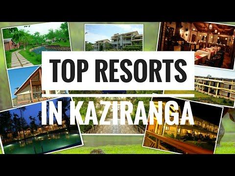 Top Resorts in Kaziranga, Assam