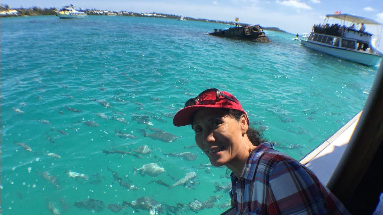 Snorkelling boat bottom glass