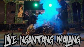 Gambar cover Suguh Sesaji Jaranan Turonggo Mulyo Live Ngantang Malang