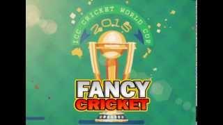 Fancy Cricket Game