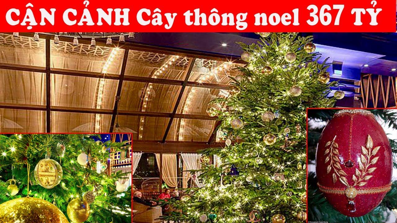 CẬN CẢNH  cây thông Noel đắt nhất thế giới trị giá hơn 367 tỷ đồng