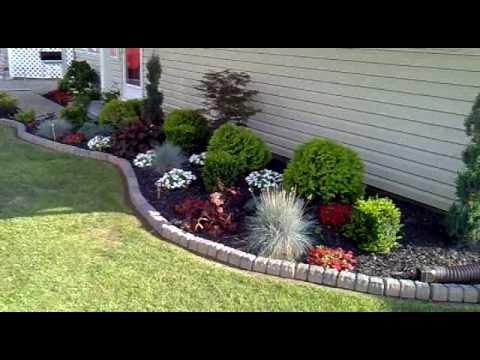 Front & Back yard