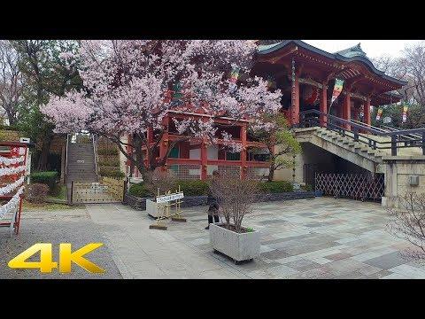 東京 目黒不動尊をお散歩『立体音響』Walking around Meguro Fudoson, Tokyo - 4K | Binaural Audio【ASMR】