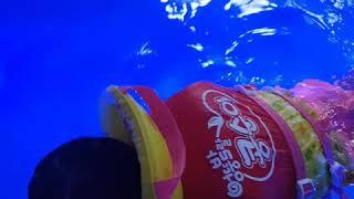 수영장에서 잠수하기