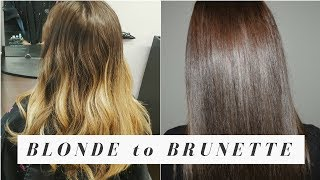 FROM BLONDE TO BRUNETTE! | Melissa Alexandria