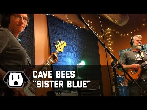 Cave Bees