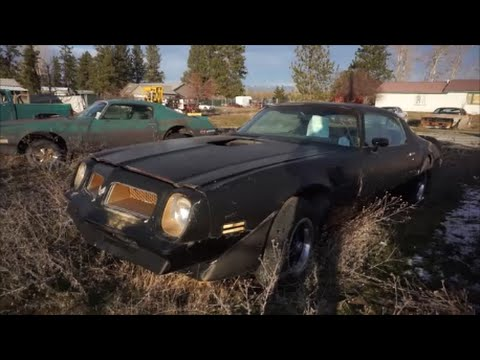 Classic Car Barn Find Lot 100 Old Cars Antique Retro Investm