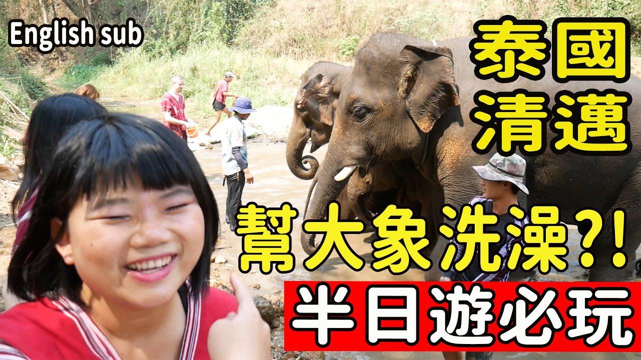 【泰國EP1】大象一日飼養員體驗?! 幫牠們洗澡做SPA?! 生態友善旅遊 近距離大象約會 #泰國自由行清邁必玩 ...