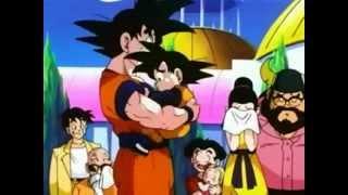 Goku Says Goodbye