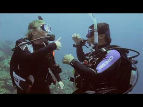 Начальный курс дайвинга  Обучающее видео PADI Open Water Diver PADI OWD  часть 3